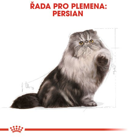ROYAL CANIN Persian Adult  4kg
