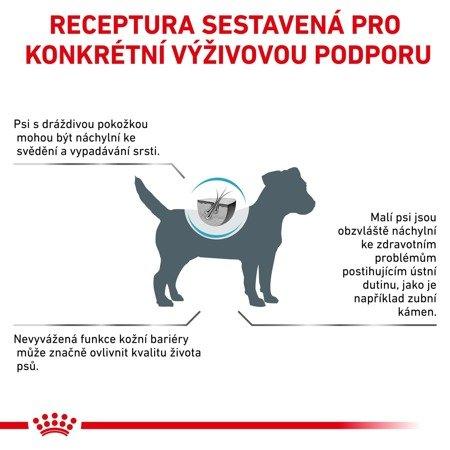 ROYAL CANIN Skin Care Small Dog SKS25 2kg