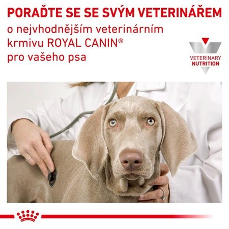 Royal Canin VD Dog kaps. Urinary S/O 12 x 100g